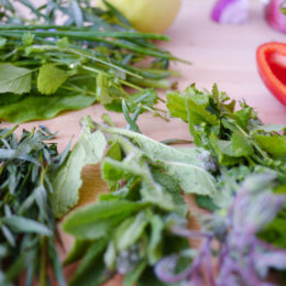 9 Easy-to-grow herbs