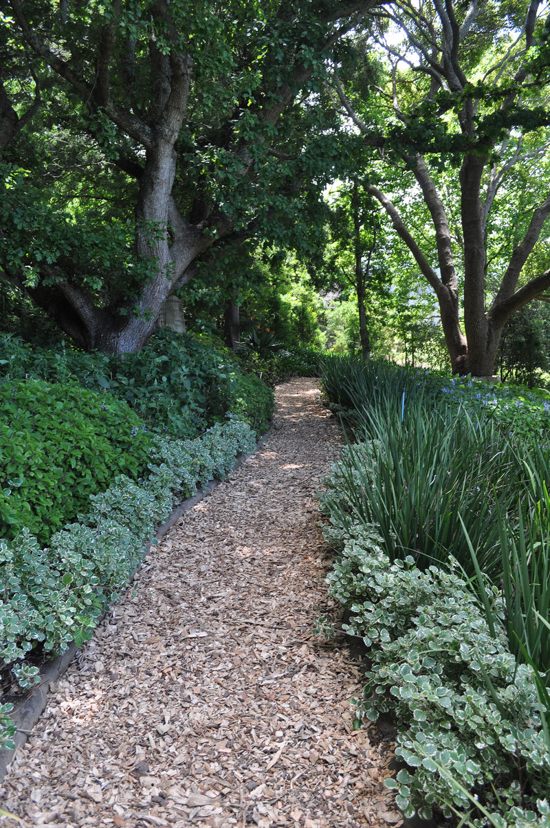 Cover a muddy path with bark chips - garden quick fixes