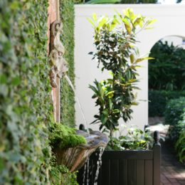 5 Garden entertaining tips