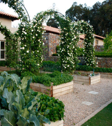 French Garden Tour: Landscaping Ideas
