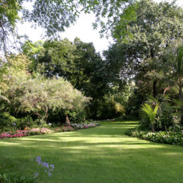 The secrets to a lush lawn