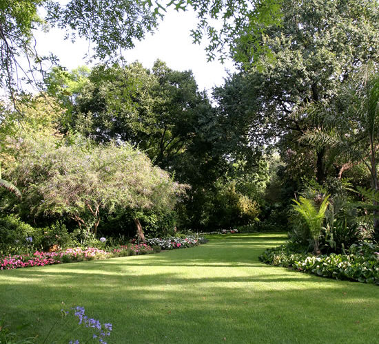 The secrets to a lush lawn | SA Garden and Home