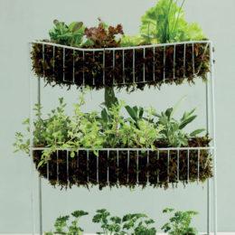 Turn a vegetable rack into a herb garden