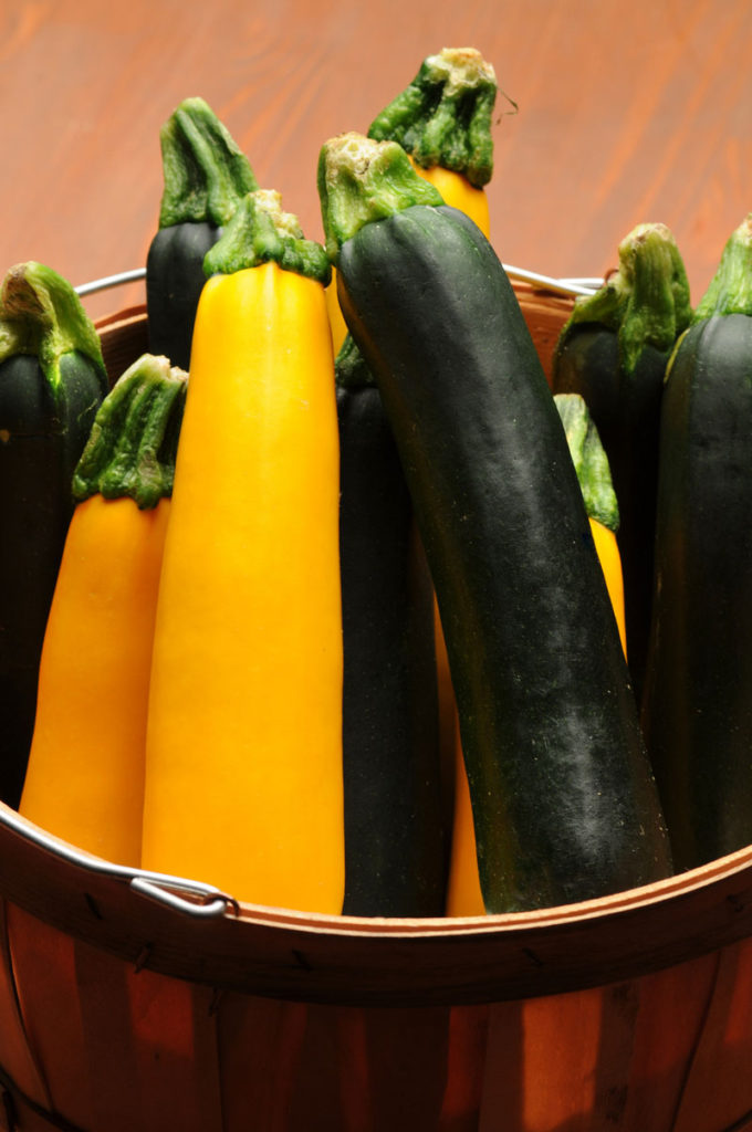 ZUCCHINI 'EASY PICK' -- vegetables and herbs for small spaces