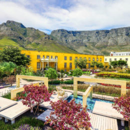 What's on: The Cape Town Flower Show