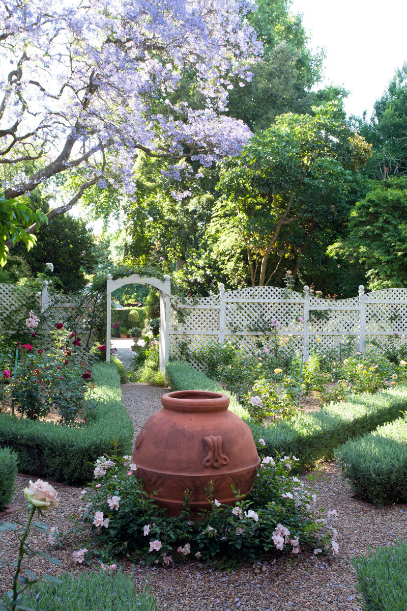 How to plant a rose garden large urn