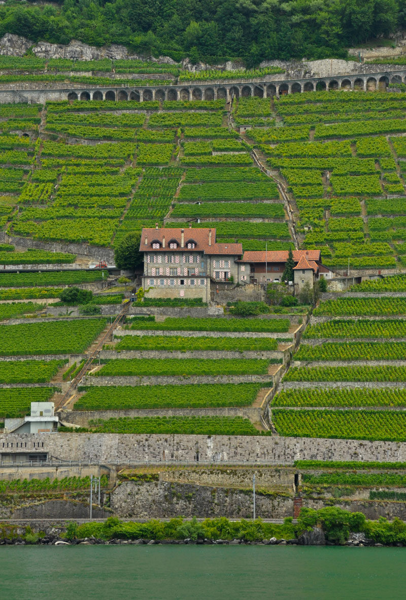 View of the ancient vineyard terraces from Lake Geneva.