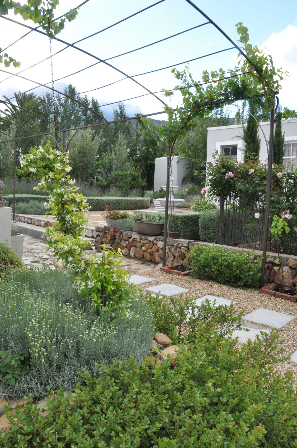 Gardening In Drought Conditions: Watering And Choosing