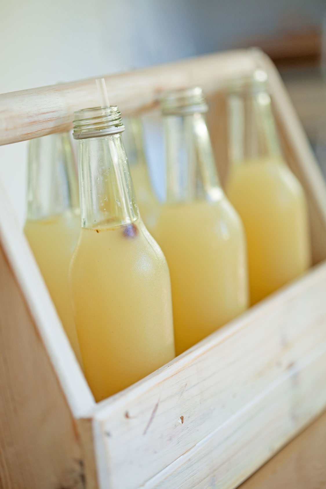Homemade Ginger Beer Sa Garden And Home