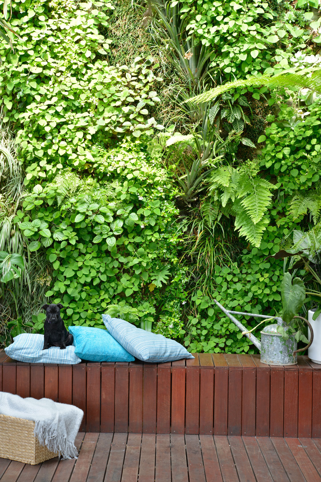 4 easy small garden ideas sa garden and home for Easy garden ideas for small spaces