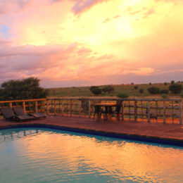 Win a two night stay at Kgalagadi Lodge worth R3 000!