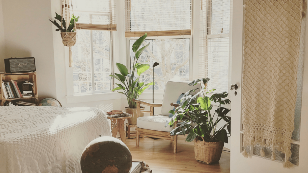Summer decor_indoor plants