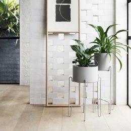 With indoor plants on-trend, display them in a stylish planter