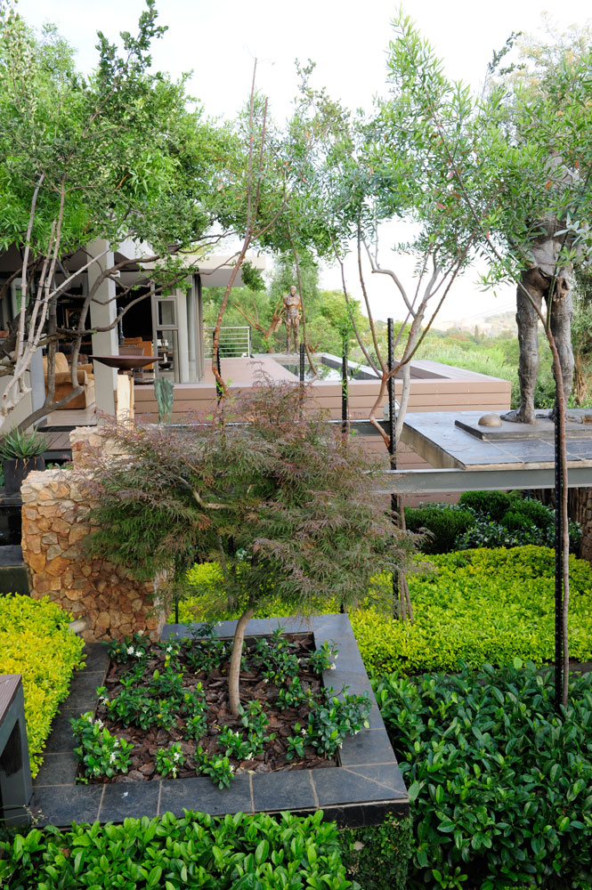 garden that suits your style - contemporary