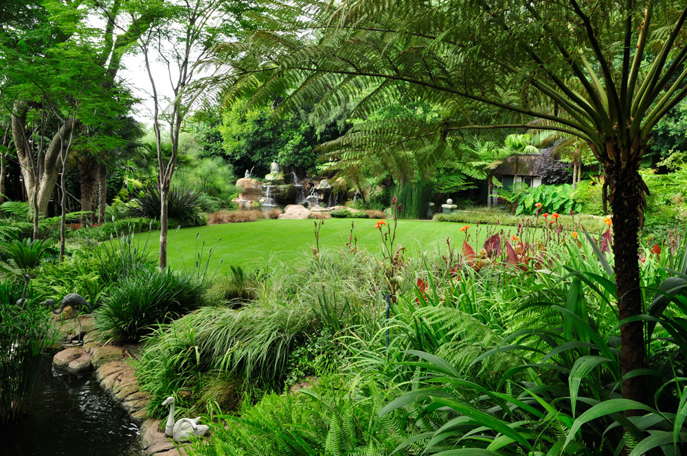 garden that suits your style - tropical