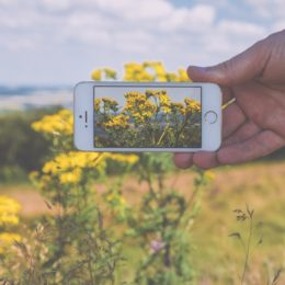 8 Gardening apps you need now