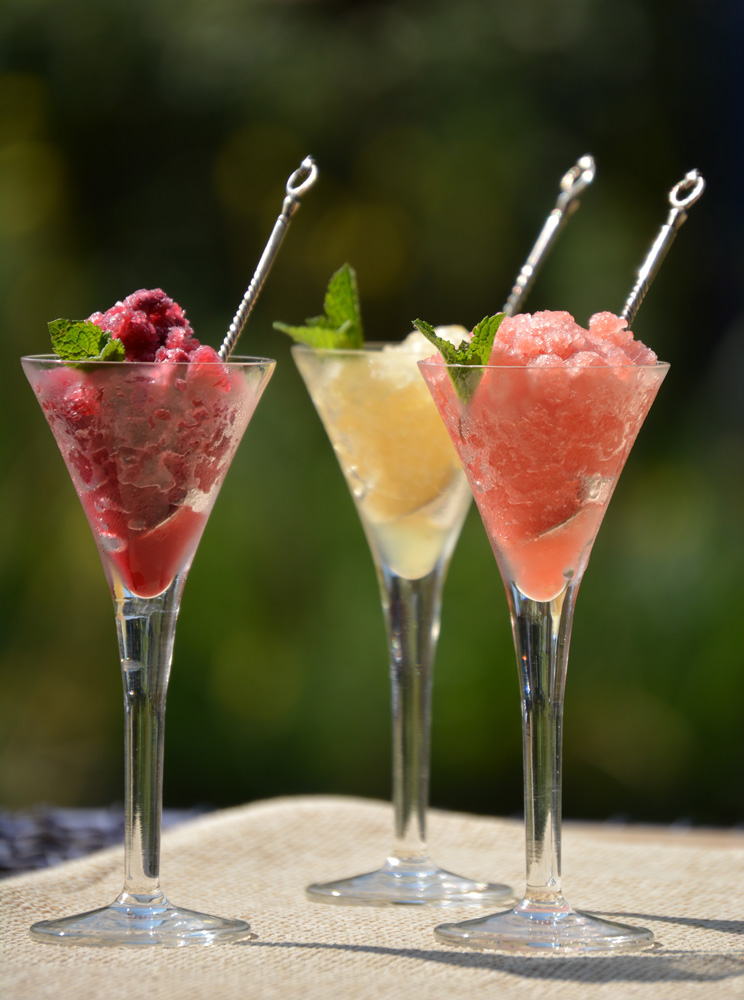 making granitas - SA Garden and Home