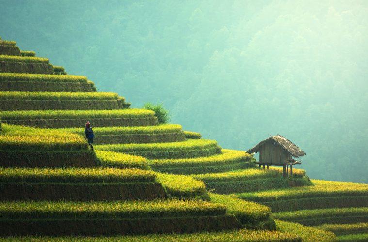 Visa-free destinations - Garden and Home